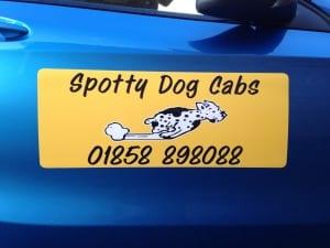 SPOTTY DOG MAGNETS CAR